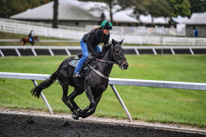 On the Track | Oliver Racing Stables